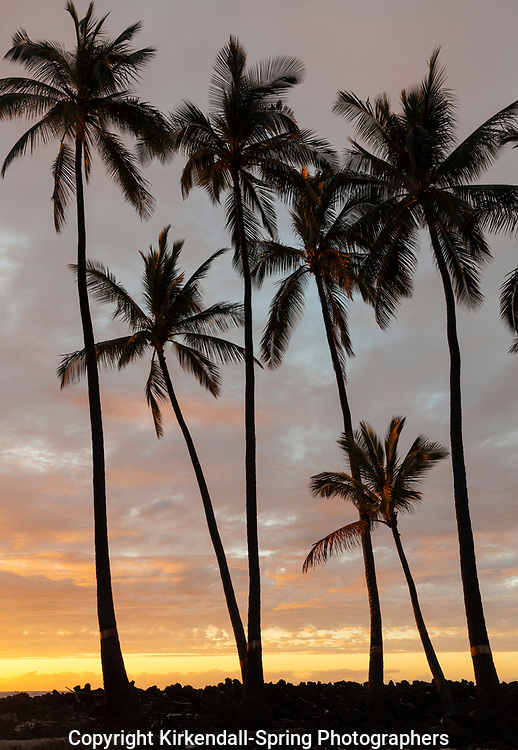 HI00457-00...HAWAI'I - Sunset over the Pacific Ocean from Kekaha Kai State Park along the Kona Coast on the island of Hawai'i.
