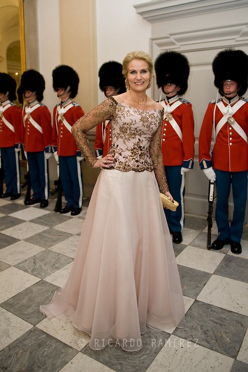 15.04.2015. Copenhagen, Denmark.Helle Thorning-Schmidt, the Danish Prime Minister attended a Gala Dinner at Christiansborg Palace on the eve of The 75th Birthday of Queen Margrethe of Denmark.Photo:© Ricardo Ramirez