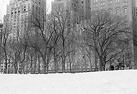 Central Park in the snow Manhattan New York