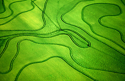 Stock photo of the aerial view of abstract lines through grassland