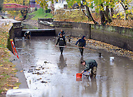 Volunteers and Parks department staff work to save fish from a Delaware Canal with low water flow Thursday November 12, 2015 in New Hope, Pennsylvania.  A broken pump at Centre Bridge has disrupted the flow of water from the Delaware River into the canal, and the rapidly receding water in the canal is threatening to kill the fish. (Photo by William Thomas Cain)