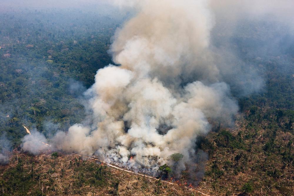 Man made forest fires in Altamira Flona (National Forest)  near Tau Indian land, Para, Brazil, August 10, 2008..Daniel Beltra/Greenpeace