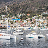 Catalina Island Avalon Bay with moored boats and Avalon city businesses and houses. Avalon California is the largest city on Catalina Island off the coast of Southern California in the United States.