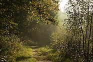 Herfst | Autumn