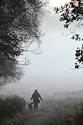 © Licensed to London News Pictures. 10/12/2013. Richmond, UK. A woman walks a dog through the early morning fog. Sunrise and deer in Richmond Park, Surrey, this morning 10 December. Photo credit : Stephen Simpson/LNP