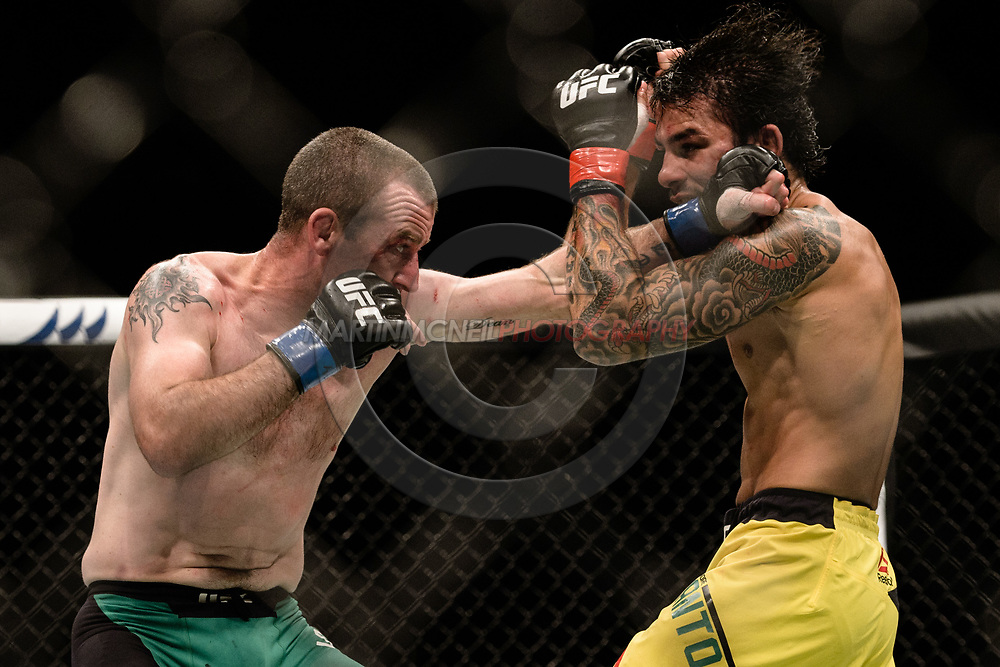 "GLASGOW, UNITED KINGDOM, JULY 16, 2017: Alexandre Pantoja (yellow shorts) versus Neil Seery (green trunks) during ""UFC Fight Night Glasgow: Nelson vs. Ponzinibbio"" inside the SSE Hydro Arena in Glasgow, Scotland on Sunday, July 16, 2017."