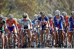 (Geelong, Australia---2 October 2010) The peloton battles its way to the top of the second nasty climb in the Geelong road race championship circuit for the 2010 UCI World Championships.  [2010 Copyright Sean Burges / Mundo Sport Images -- www.mundosportimages.com]
