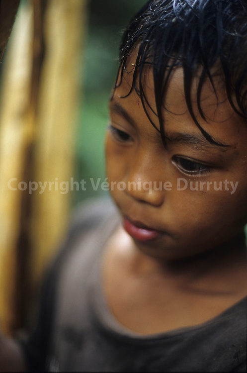YOUNG BOY  WORKING IN THE FOREST, NORTH LUZON, THE PHILIPPINES