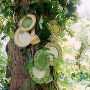 plates and cups fastened to tree with vines