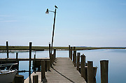 Bird on light post at the end of a pier at Wachapreague, Verginia, Wetlands, Atlantic Ocean.