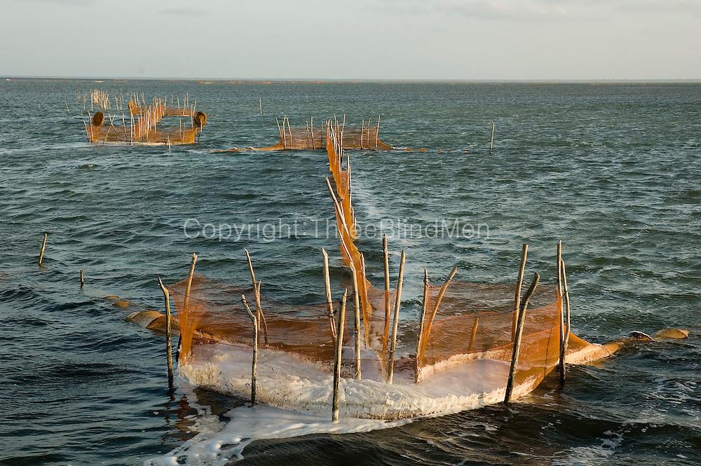 Sri lanka fishing nets fish traps jaffna lagoon for Sri lanka fishing