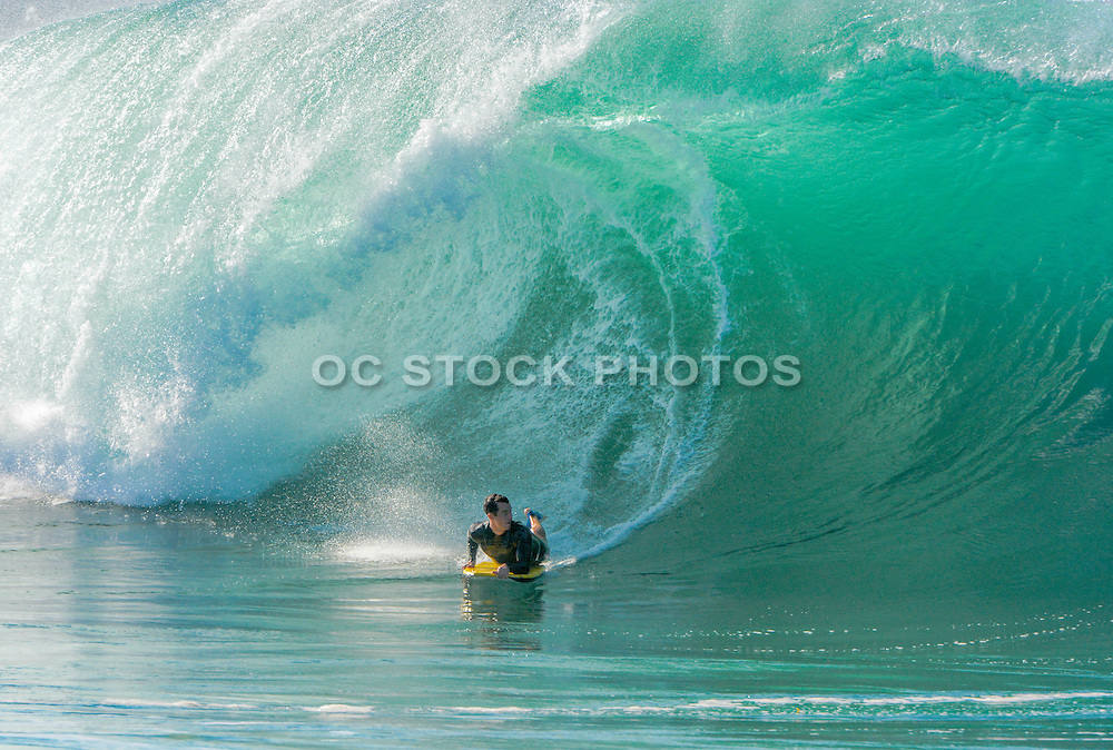 Boogie Boarder at the Wedge