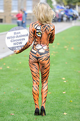 © Licensed to London News Pictures. 11/09/2017. London, UK. Joanna Krupa, American-Polish supermodel, wears a tiger bodysuit in front of the Houses of Parliament in support of PETA calling for a ban on animals in circuses.  Photo credit : Stephen Chung/LNP