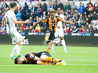 Football - 2016 / 2017 Premier League - Swansea City vs. Hull City<br /> <br /> Abel Hernandez of Hull City shoots at goal  while Robert Snodgrass of Hull City lies injured -- at the Liberty Stadium.<br /> <br /> COLORSPORT/WINSTON BYNORTH