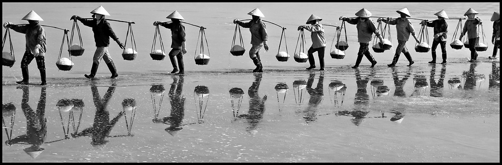 Panoramic picture of vietnamese women workers carrying heavy loads of salt in their yoke. Doc Let salt marsh, Khanh Hoa area, Vietnam, Asia. They walk in single line and their bodies are reflected in the water.