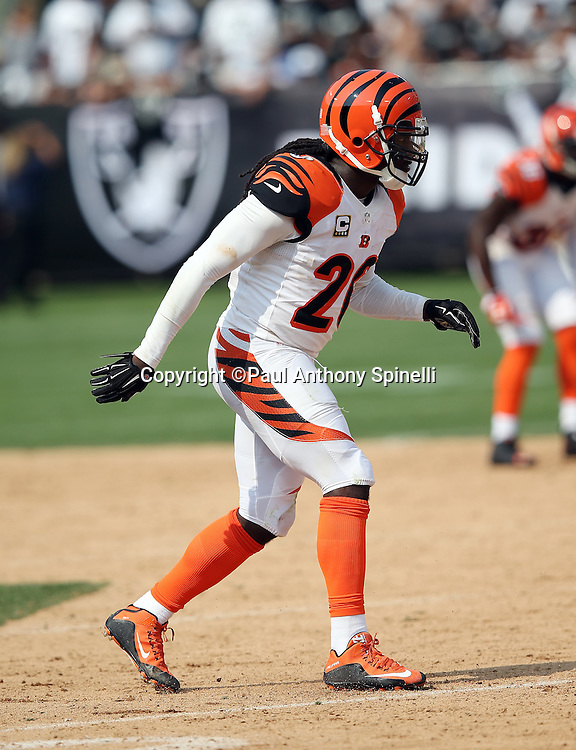 Cincinnati Bengals free safety Reggie Nelson (20) makes a move during the 2015 NFL week 1 regular season football game against the Oakland Raiders on Sunday, Sept. 13, 2015 in Oakland, Calif. The Bengals won the game 33-13. (©Paul Anthony Spinelli)