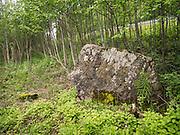 Karl Johan-steinen, oppkalt etter kong Karl Johan Bernadotte, har fått navnet fordi kongens hærmenn skal ha rastet her på veg sørover, etter signingen av kongen i Trondheim, Nidaros, i 1818. Steinen skal ligne på kongens profil, dvs. særlig nesen.