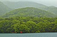 Tori shrine Ashi-no-ko Lake , Motohakone Japan