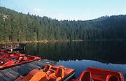 Deutschland, Germany,Baden-Wuerttemberg.Schwarzwald.Mummelsee, Tretboote am Ufer.Mummel Lake, paddle boats...