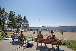 North America, United States, Washington, Kirkland, volleyball game at Marsh Park on Lake Washington