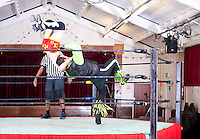 Young men wrestling in ring