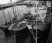 1971 - New Fishing Vessels At Dun Laoghaire
