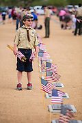 26 MAY 2012 - PHOENIX, AZ:  A Boy Scout carries American flags through the National Memorial Cemetery in Phoenix, AZ, Saturday. Hundreds of Boy and Girl Scouts along with the Young Marines, a Scout like organization, place American flags on veterans' graves in the National Memorial Cemetery in Phoenix every year on the Saturday before Memorial Day.      PHOTO BY JACK KURTZ