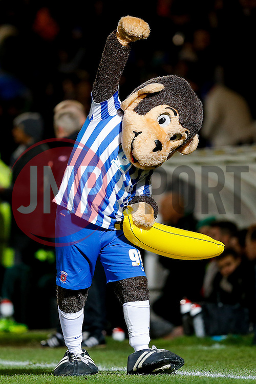 Hartlepool United mascot Angus celebrates after Jonathan Franks scores a goal to make it 1-0 - Photo mandatory by-line: Rogan Thomson/JMP - 07966 386802 - 05/12/2014 - SPORT - FOOTBALL - Hartlepool, England - Victoria Park - Hartlepool United v Blyth Spartans - FA Cup Second Round Proper.