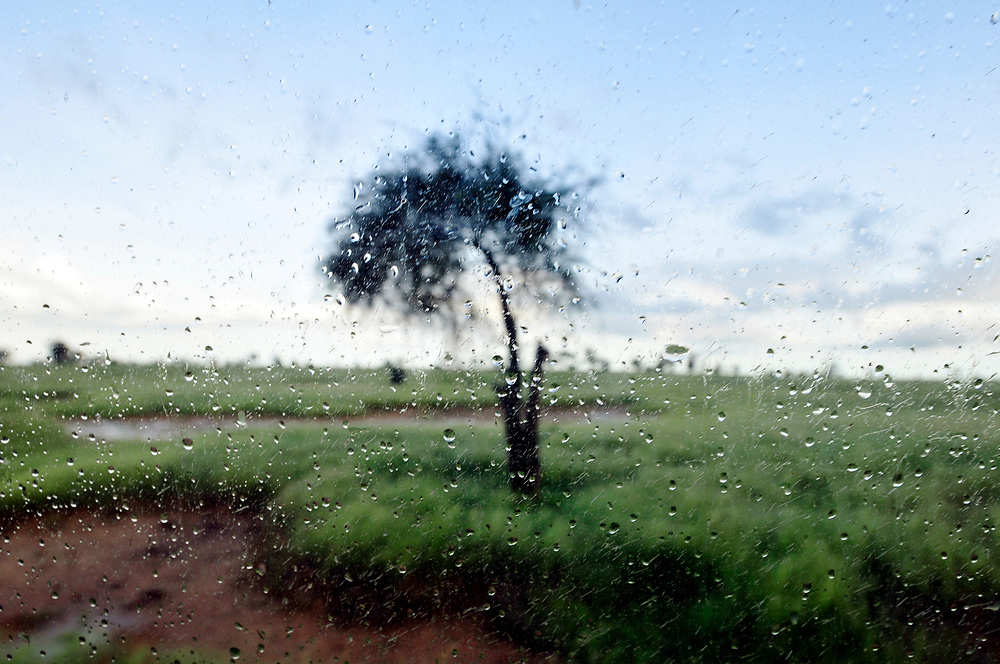 The precipitation that falls during the rainy season in the Sahel transforms the otherwise parched landscape into green pastures and is essential to agricultural production, livelihoods and the way of life of the region's population.<br />