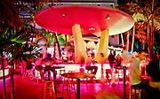 The flying saucer-like bar at the Clevelander Hotel on Miami Beach's neon-drenched Ocean Drive. This spectacular structure epitomizes the Space Age flamboyance of the Miami Modern, or MiMo, style of the 1950s and '60s.