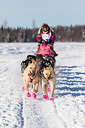 Musher DeeDee Jonrowe after the restart in Willow of the 46th Iditarod Trail Sled Dog Race in Southcentral Alaska.  Afternoon. Winter.