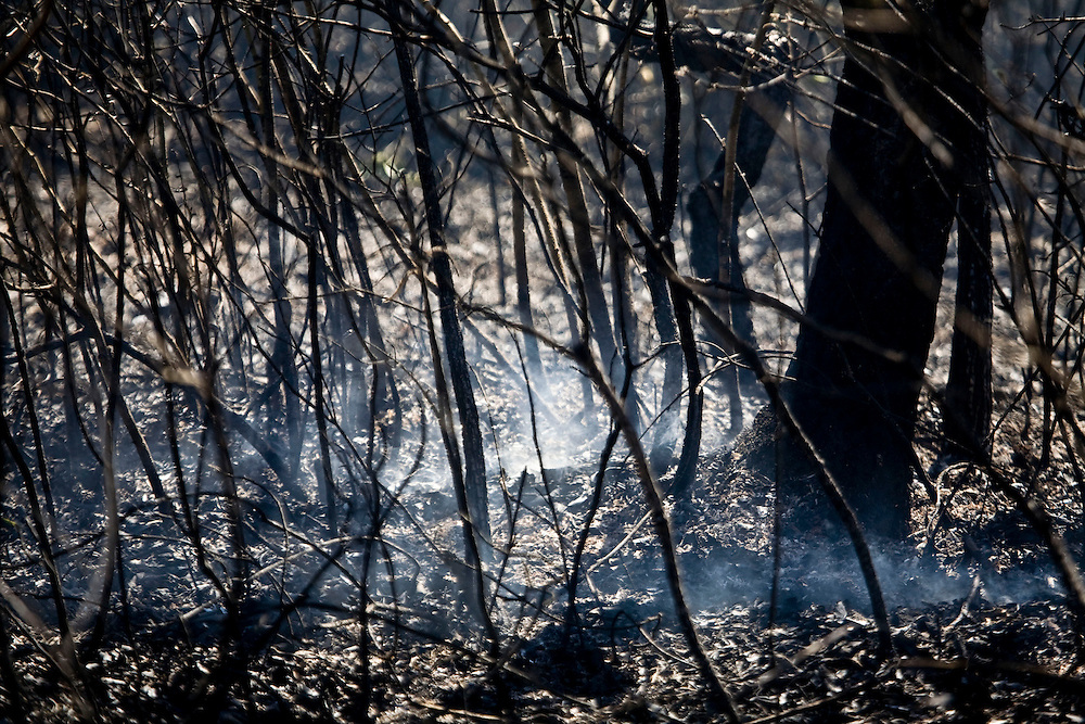 Nova Lima_MG, Brasil...Incendio no Parque Estadual Serra do Rola Moca...The fire in the State Park Serra do Rola Moca...Foto: JOAO MARCOS ROSA / NITRO.
