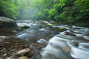 Little River, Great Smoky Mountains, Tennessee.  Out of a lifting mist the water comes down, flanked and studded with perfect greens.  It is pulled on a gradual gradient, and leaves a trail with each step, dragging a memory backward. The life of it's flow should be beautiful, but I find it a little cold, a little remote.  Looking at the boulders, strewn and fallen in the flow, I think of my journey downriver.  They are like pieces of me, broken off with each disappointment, each betrayal along the way.  They stand like lessons learned, remnants of selflessness meets selfishness...bad decisions and weakness.  They stand as a lesson to make myself harder, even if I don't want to be, because what is true in nature is not always true in me.  But being true litters the streambed, back as far as I can see.  If each had a name, they would stand as virtues lost, lessons learned.  The perfect greens belie a bittersweet place;  I'll leave it's beauty for another time.