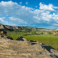 badlands of the missouri river breaks national monument, spring, green grass, pillowy clouds, umrbnm, russel country, montana, usa, upper missouri river breaks national monument, russell