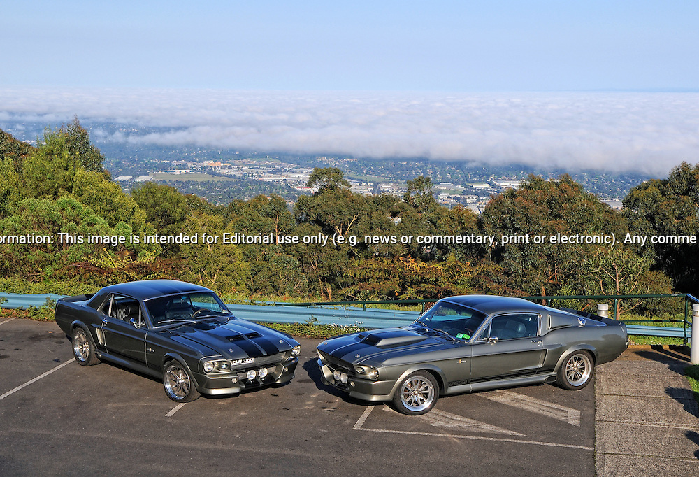 1968 & 1967 Ford Mustang Fastback Mustang Eleanor Replica's of the Year 2000 Movie car from Gone in 60 seconds.Skyhigh Lookout, Mt Dandenong.23rd October 2011.(C) Joel Strickland Photographics.Use information: This image is intended for Editorial use only (e.g. news or commentary, print or electronic). Any commercial or promotional use requires additional clearance.