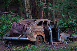 Abandoned Car, Stuart Island, Washington, US