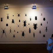 Art work on display at The New Dowse Art Museum,  Laings Road, Lower Hutt, Wellington, New Zealand. 24th January 2011. Photo Tim Clayton...