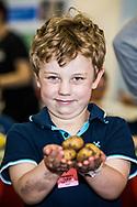 Branston Potatoes RHS 2017