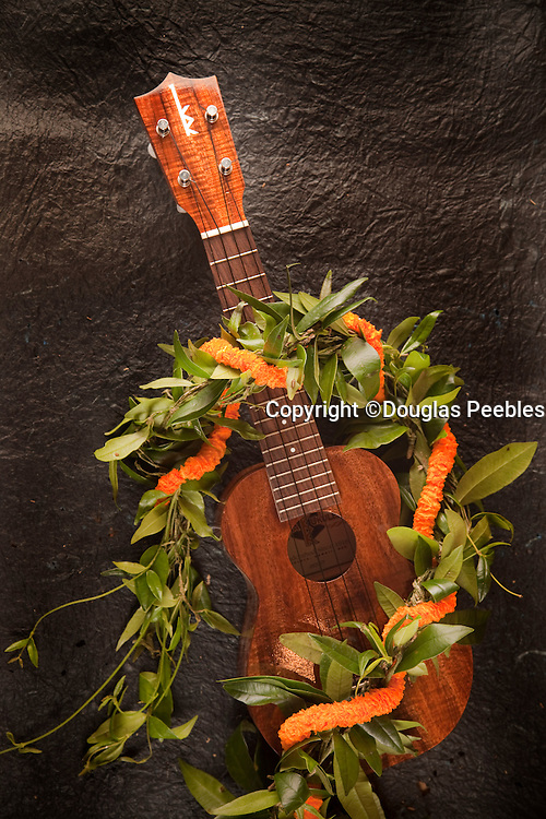 Ukulele, Hawaii
