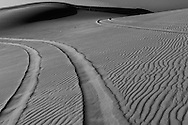 Taken during my trip to Dubai. Took a desert safari trip somewhere in the outskirt of Dubai (United Emirate Arab). fine art, fine art photography, black and white, black&white, monokrom, monochrome