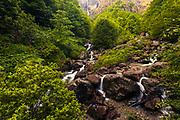 Northern Dzhendem reserve in Balkan Mountains