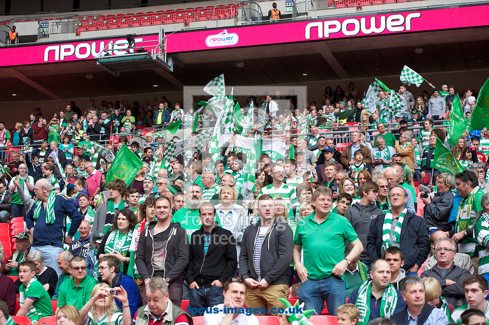 Picture by Alan Stanford/Focus Images Ltd +44 7915 056117.19/05/2013.Fans  of Yeovil Town before the npower League 1 Play Off Final match at Wembley Stadium, London.