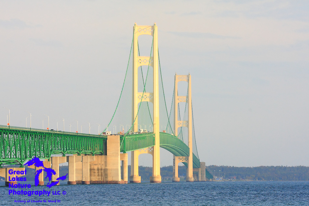 Michigan's Mackinac Bridge is illuminated by the early-morning autumn sun. In service for 60 years, the bridge is not only a tourism icon, but one of the truly beautiful engineering objects in the United States.