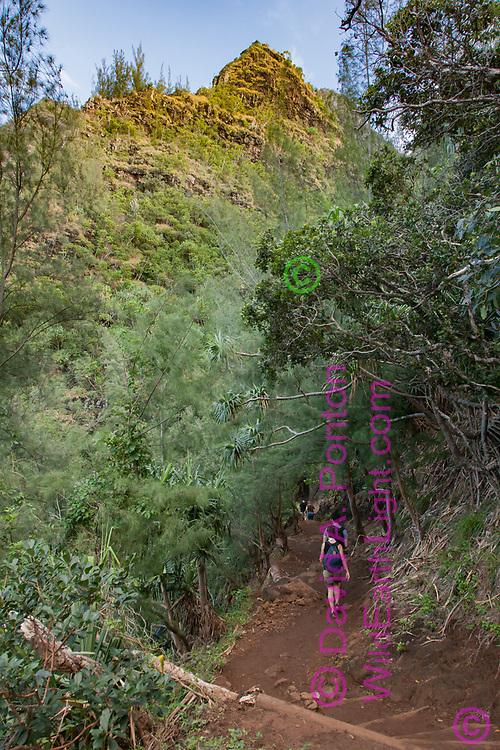 Hikers, Kalalau Trail, Na Pali Coast, Kauai, Hawaii, © 2010 David A. Ponton