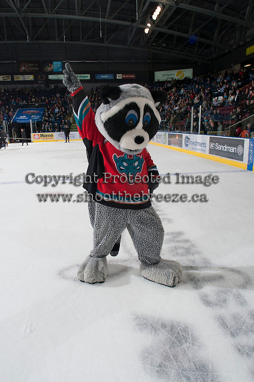 KELOWNA, CANADA - JANUARY 11:  Rocky Racoon, mascot of the Kelowna Rockets hams it up on the ice during intermission between the Tri City Americans at the Kelowna Rockets on January 11, 2013 at Prospera Place in Kelowna, British Columbia, Canada (Photo by Marissa Baecker/Shoot the Breeze) *** Local Caption ***