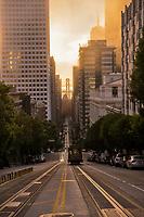 California Street, Morning Fog