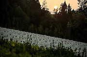 The Largest Cemetery Of The Red Army Martyrs In China<br /> <br /> A general view of the largest cemetery of the Red Army martyrs in China in the sunset is seen on September 25, 2014 in Bazhong, Sichuan province of China. The cemetry of the Red Army in chuan-shan revolutionary base, the largest cemetery of the Red Army martyrs in China is constituted of cemeteries, sites of general hospitals of the forth route armies and Wangping Village. The cemetery area, which is covered 350 mu (about 233,333 square meters) and buries 25048 Red Army martyrs welcomes its first National Martyrs' Memorial Day on September 30. The National Martyrs' Memorial Day of the People's Republic of China is set for September 30 every year by laws.<br /> ©Exclusivepix
