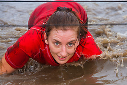 Wembley, London November 22nd 2014. Thousands of competitors in teams compete in the Men's Health Survival of the Fittest event, raising money for various charities. Event organisers Rat Race created the challenging course, with various obstacles from mud pools to scaffolding climbing frames, with both serious and not-so-serious athletes competing for glory. PICTURED: Her eyes on the prize - finishing, a woman makes her way through another freezing, muddy water obstacle.