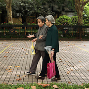 Shanghai, China:  Fuxing Park in the colonial-era French Concession still has the European feeling with wide tree lined walks and a French style garden. Locals enjoy their morning walk, play board games or exercise tai chi..Jose More Photography