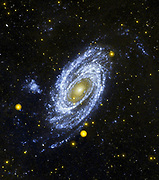Spiral Galaxy M81 viewed from the Hubble Space Telescope.  Credit NASA. Science Astronomy Stellar